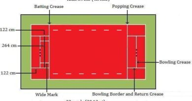 Cricket Pitch and Ball Details